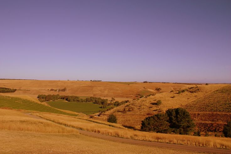 the gorgeous view from Clyde Park Winery
