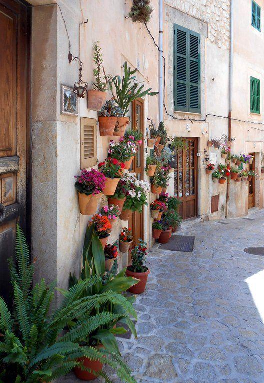 In Mallorca heißt es Platz sparen: Dank der kleinen Hängetöpfe kommen die mediterranen Blumen dennoch gut zur Geltung.
