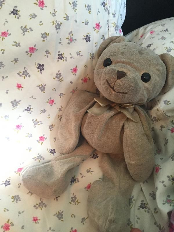 Lost on 28 Jul. 2016 @ Punta Cana. He is an Animal Alley teddy bear that was initially pink but is now greyish-brown from many many years of love and cuddles. He is very floppy (not much stuffing) and has a bow on his neck. He has h... Visit: https://whiteboomerang.com/lostteddy/msg/tfksfg (Posted by Juliana on 31 Jul. 2016)