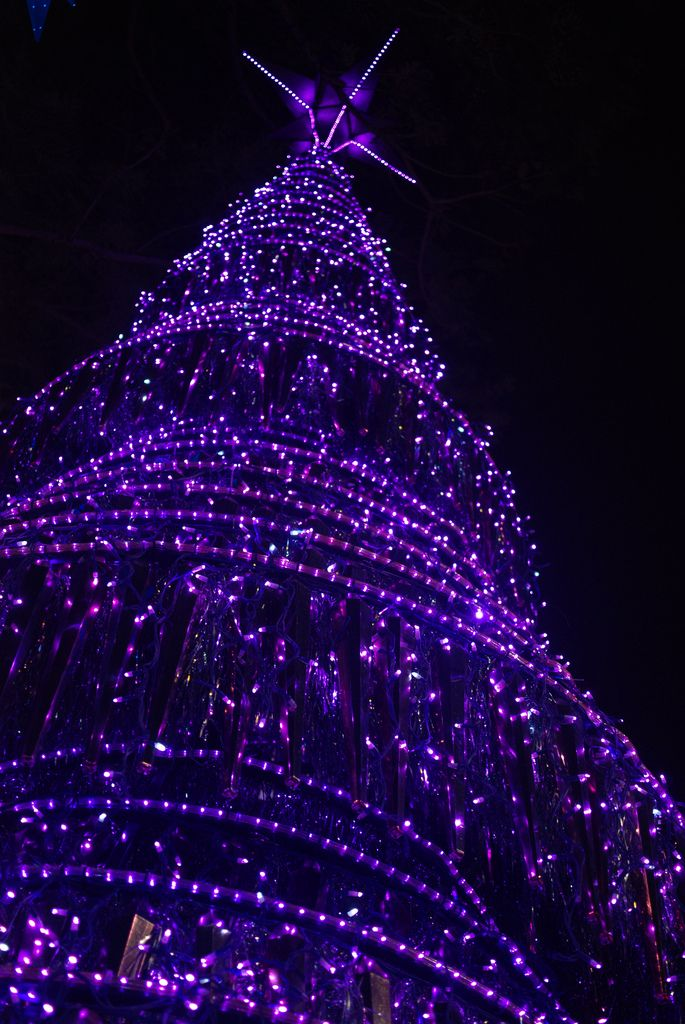 Purple Christmas FOR MY DAUGHTER MISTY LOU LOU......MERRY PURPLE CHRISTMAS 2013 I LOVE YOU