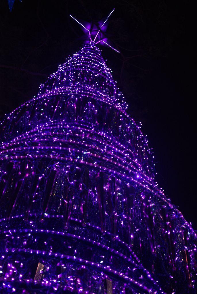 about purple christmas on pinterest purple christmas tree purple