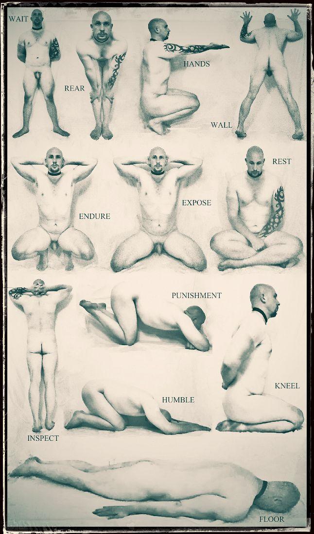 Bdsm Positions 105