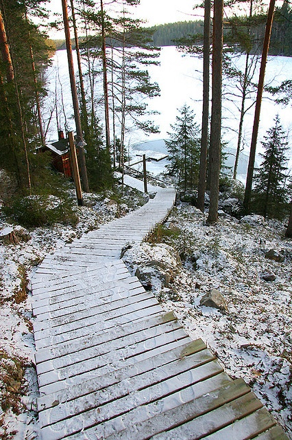 A sauna path, no matter is it summer or winter, after sauna to swim in the ice cold lake Finnish style.