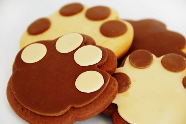 Yet another idea for my dog-mad girls! Something to have for afternoon tea whilst planning what dog to buy....