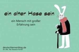alter_Hase_Redewendungen_Bilder_deutschlernerblog