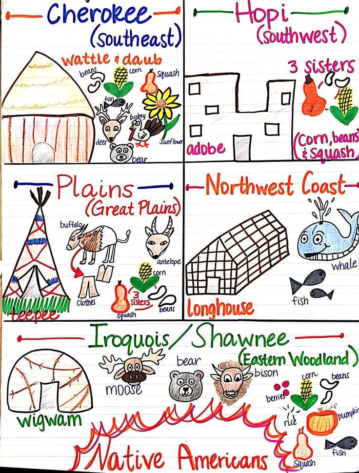 Native American Unit anchor chart (image only)
