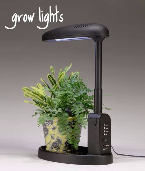 Grow Light Stand Led: 25 Best Growlight Images On Pinterest
