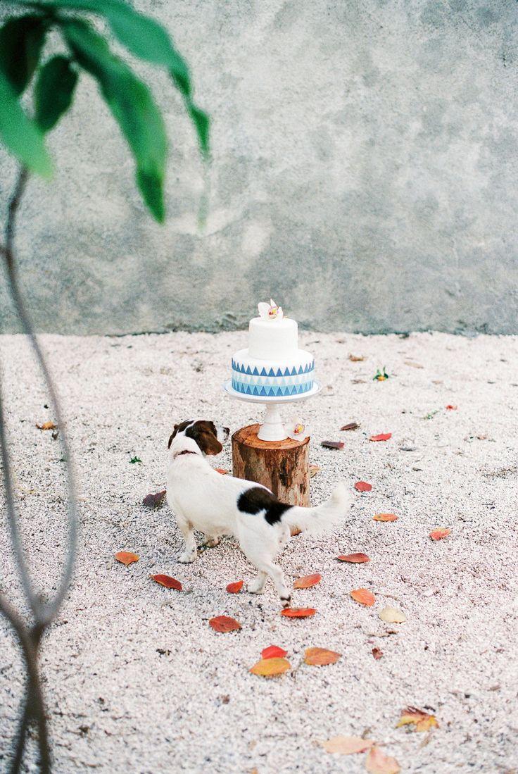 Wedding Photographers: Sotiris Tsakanikas…