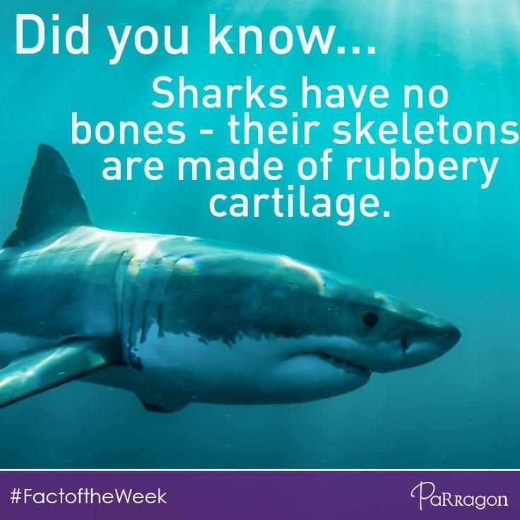 Here's a fishy #FactoftheWeek!