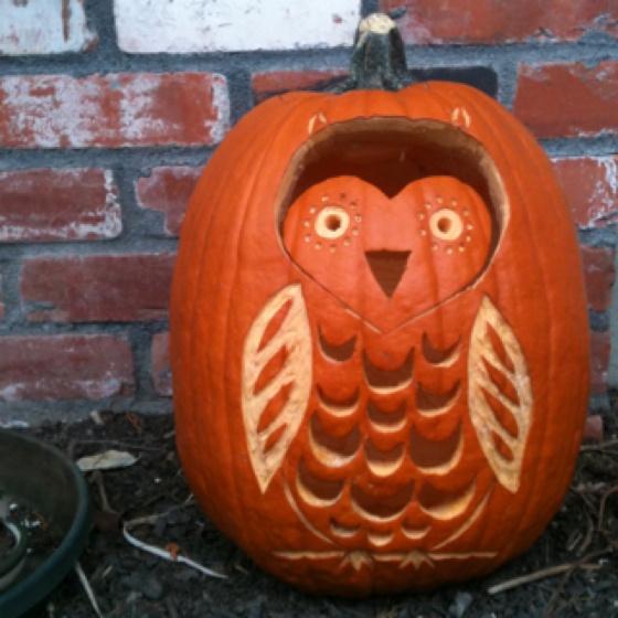 Owl pumpkin - cool!
