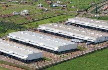 Aluguel de Galpão Sumaré - SP - http://galpaoaluguelevenda.com.br/