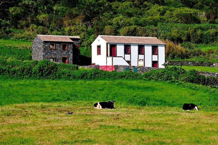 SIARAM :: Centro de Interpretação da Fajã da Caldeira de Santo Cristo, Sao Jorge Island, Azores, Portugal