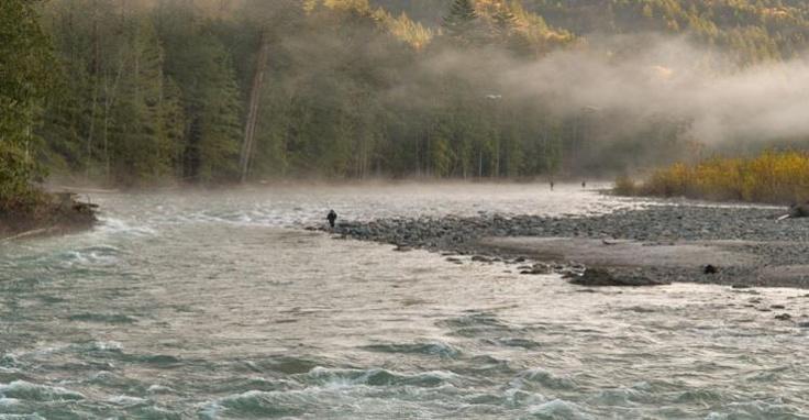 Misty day fishing on the Vedder River - Image Copyright Tim Epp