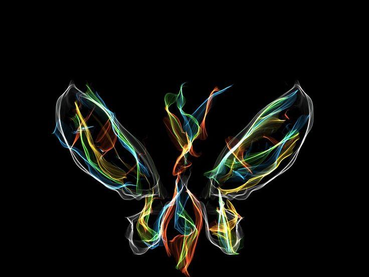 Butterfly - Silk interactive iOS App