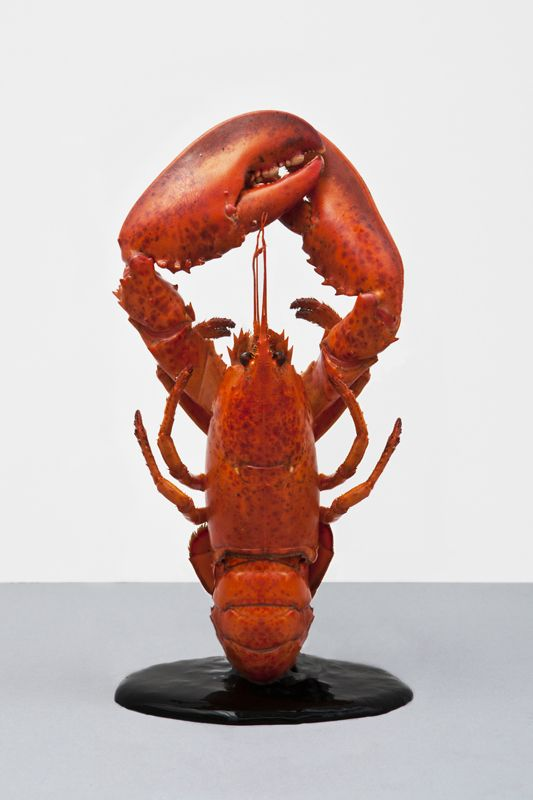 Martin Creed x Pierre Gagnaire Still Life Lobster Graphic Art Yum!