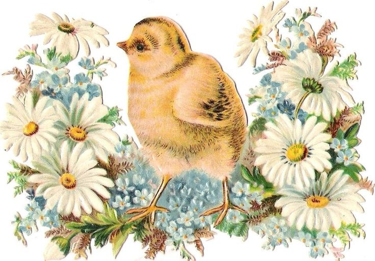 Oblaten Glanzbild scrap die cut chromo Ostern easter Küken 12,4cm chicken