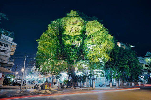 樹木に宿る神々をプロジェクトマッピングで投影するパフォーマンスアート
