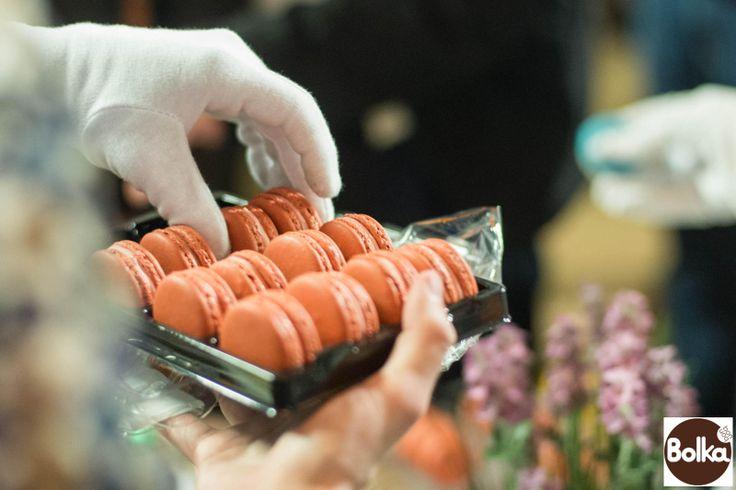 Bolka - Macaron Nap 2014 - Macaron Day Hungary