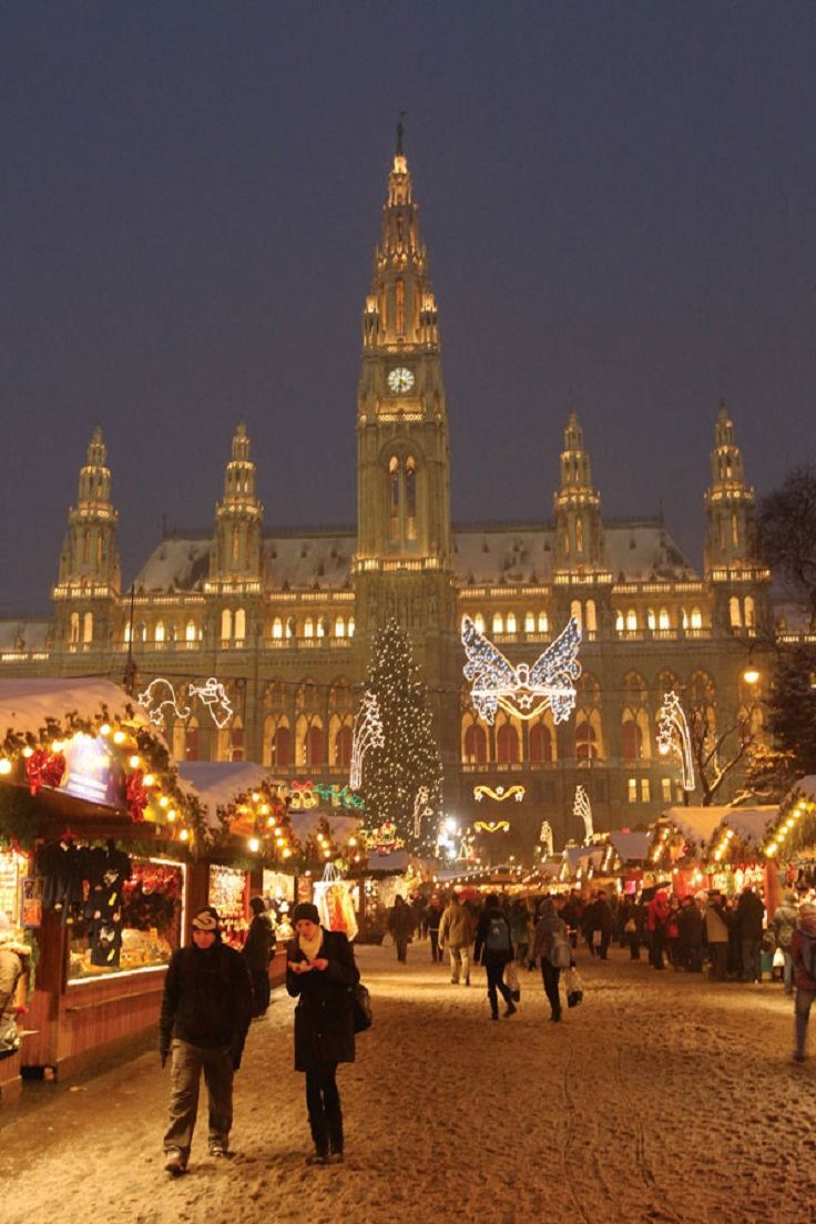 Vienna Christmas Market - but the next time I shop there I'll be sure to wear many layers because it's so drab and chilly and damp in Vienna that time of year.