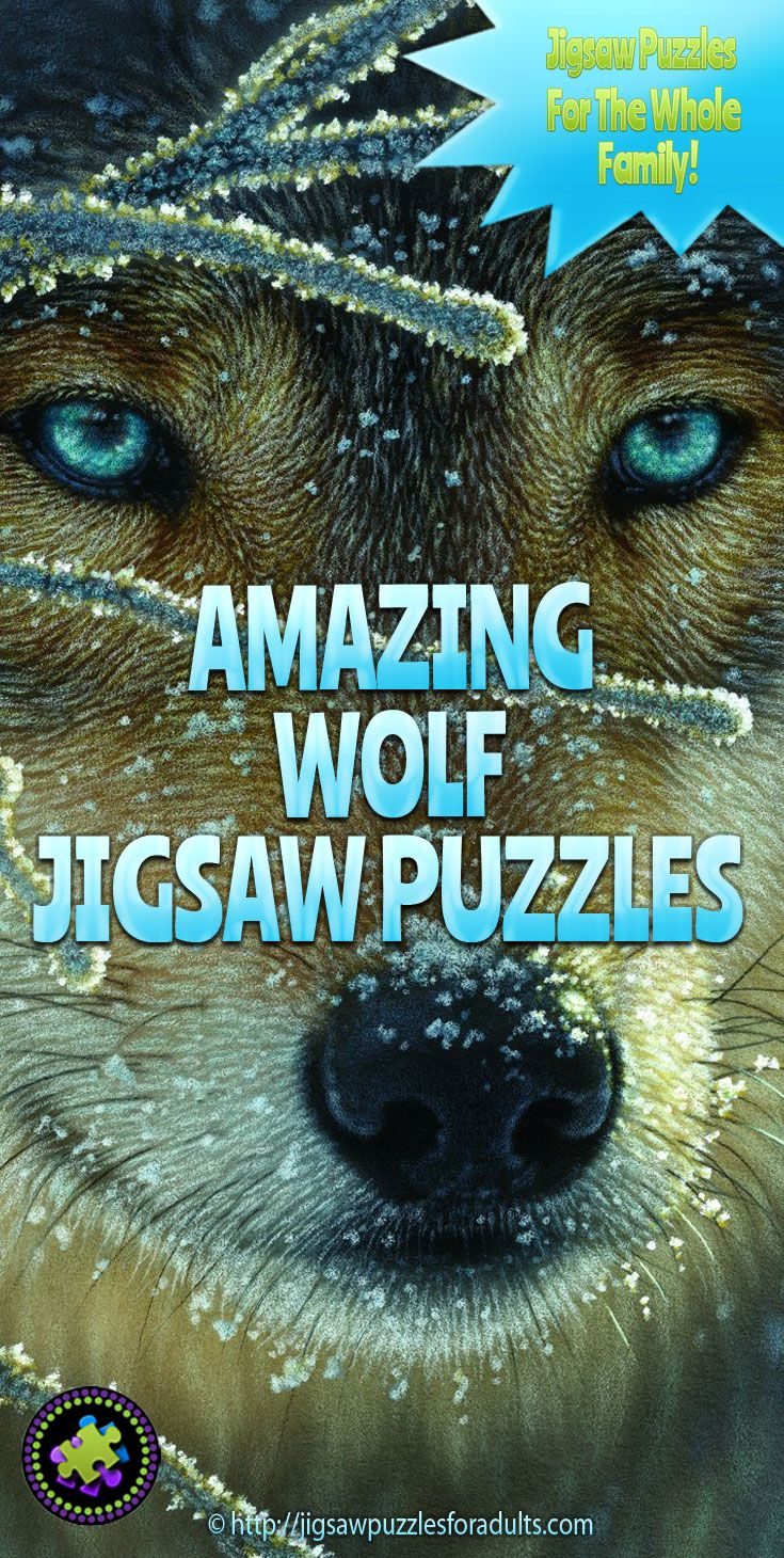 If you are here looking for wolf jigsaw puzzles for adults than you are one of the many jigsaw puzzlers who simply love doing jigsaw puzzles of wolves. You'll find wolf puzzles from famous artists and photographers, as well as wolf shaped jigsaw puzzles and round puzzles of wolves. You will also find a number of beautiful Native American art puzzles with wolves in them.