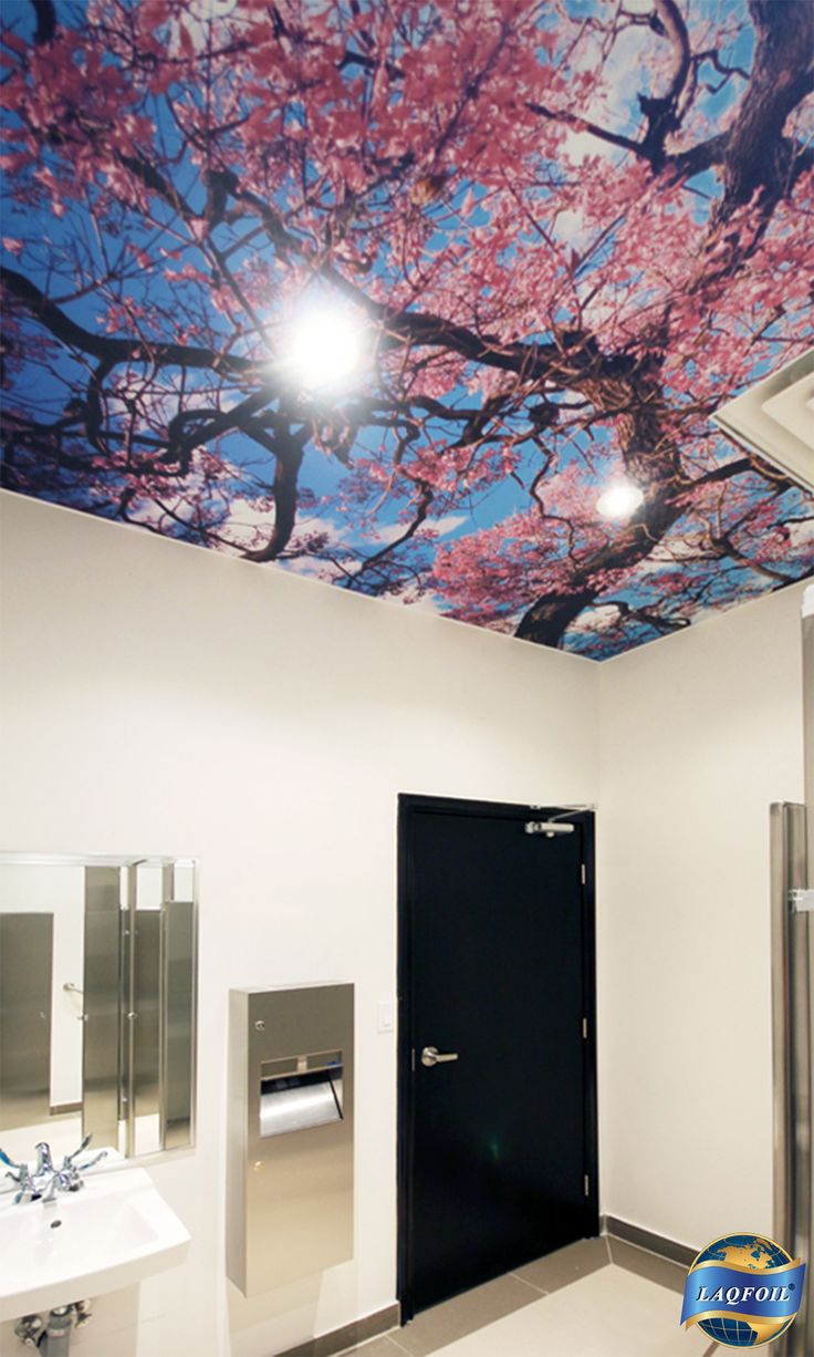 Color printing joliet - Laqfoil Stretch Ceiling Combines With Digital Wide Format Printing Technology For Spectacular Results