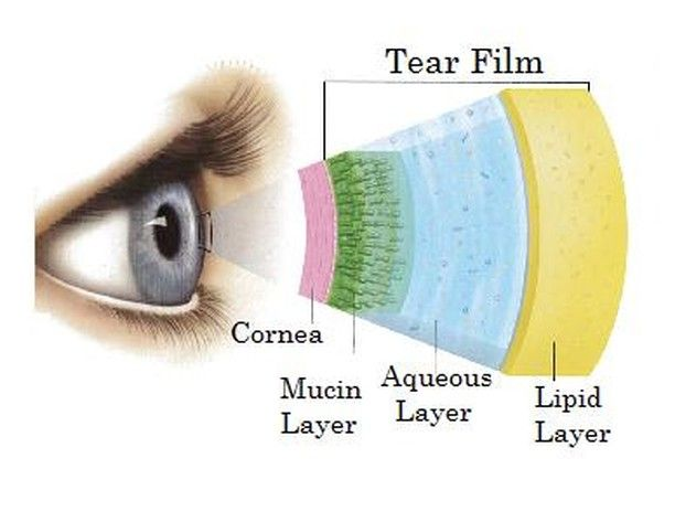 Our Tear Film Has Three Main Layers The Outer Lipid Layer