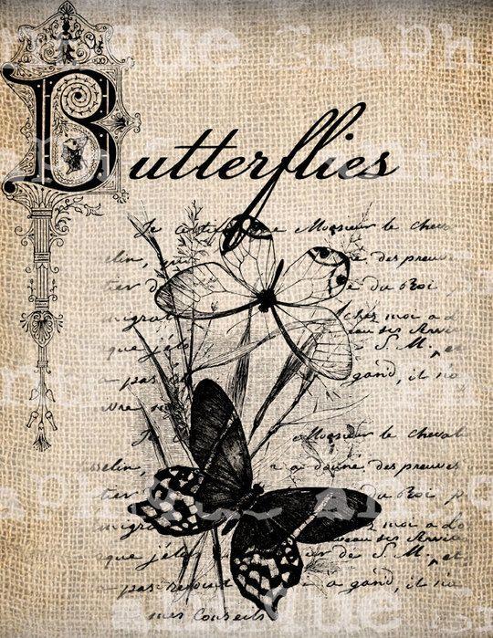 * mariposas