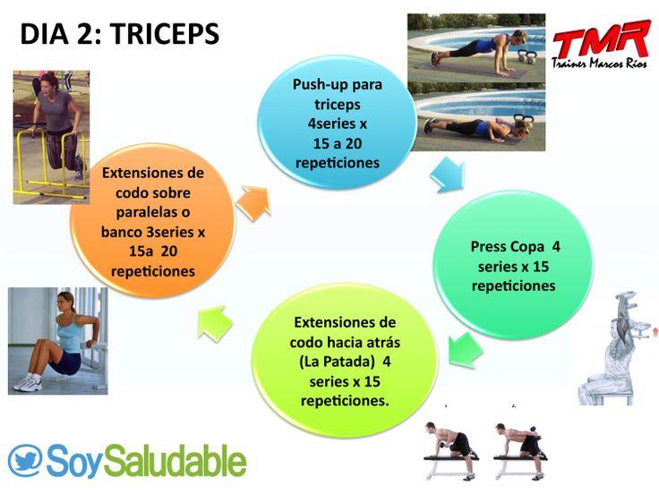 PLAN DE EJERCICIOS DIA 2 TRICEPS | Ejercicios | Pinterest