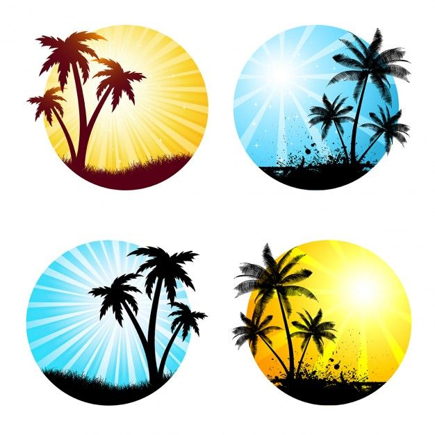 Various summer scenes with palm trees Free Vector