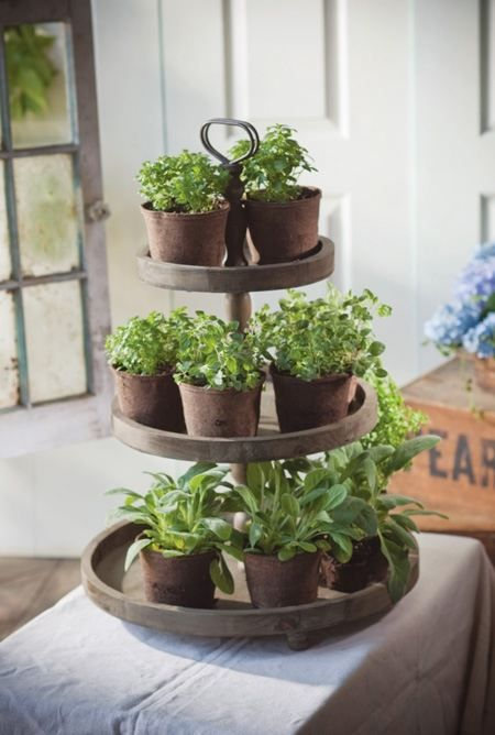 I ♥ the idea of using an old galvanized cake stand to contain small herb pots indoors