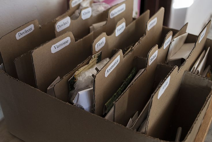 Organizarea semintelornu a fost niciodată atât de uşoară pe cât mi se pare acum. Aveam seminţe peste tot, fără a exagera, cutii şi cutiuţe, pungi şi punguţe. Odata cu aplicarea managementului în grădină, a