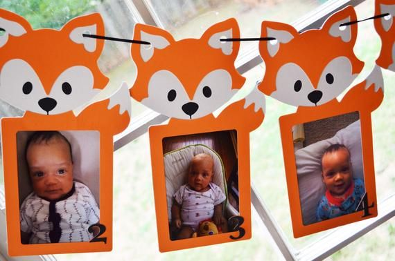 Similar Items As 0-12 Fox Photo Banner – First Year Photo Banner – Fox Party …