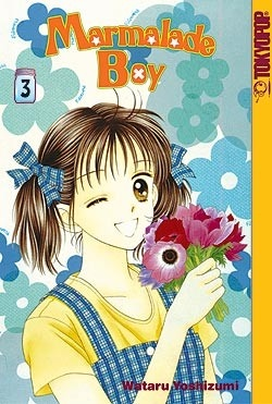 Marmalade Boy Graphic Novel 3