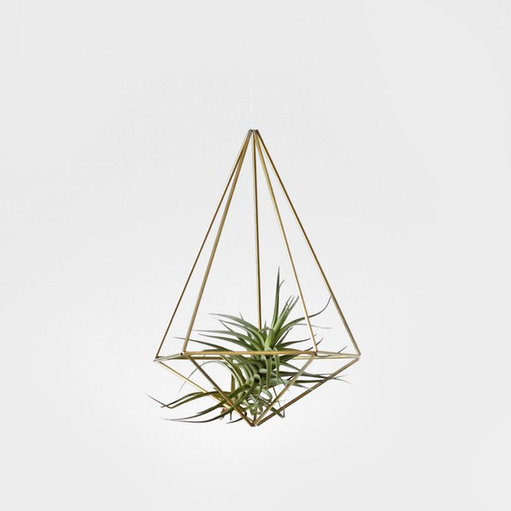 Brass Himmeli Hanging Planter / Hanging Mobile Prism No. I Love This Idea  For Air Plants.
