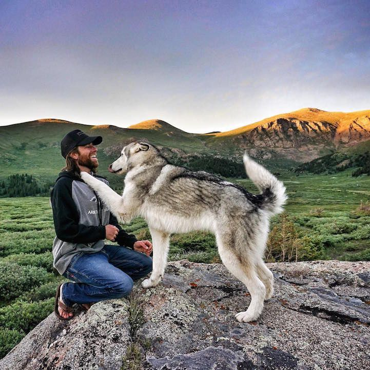 Best Loki The Wolf Dog Images On Pinterest Animal Husky - Guy quits his job to go on epic adventures with his husky