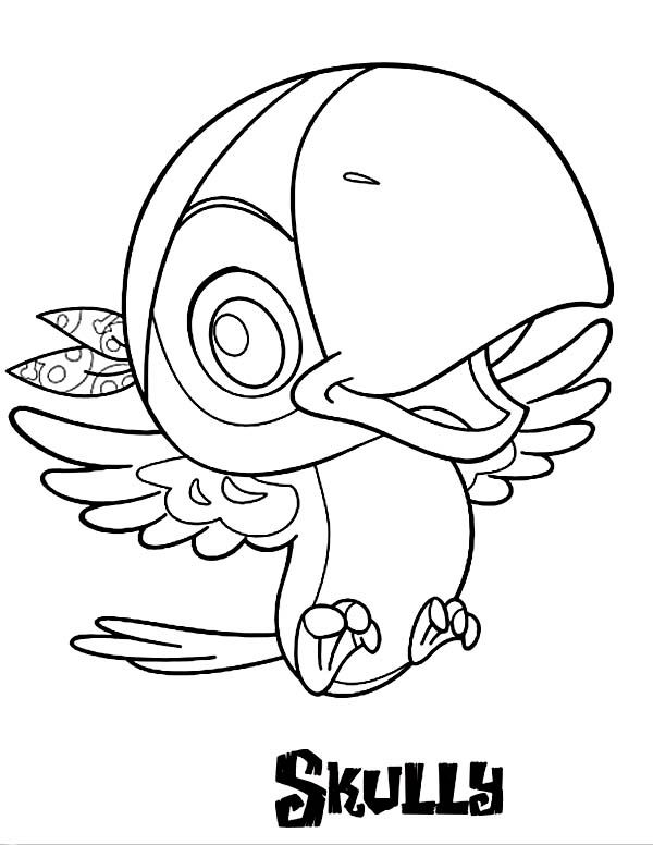 coloring pages pirate parrot - photo#13