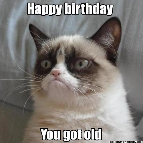 Happy birthday  You got old - Grumpy Cat...you shouldn't have!