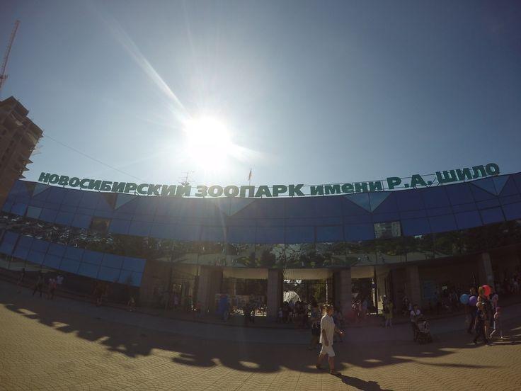 Новосибирский зоопарк (Novosibirsk Zoo) 2016