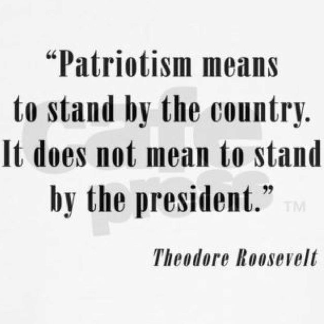 Patriotism is : all of our country pulling together against fascism! We fought wars over this. We know what America stands for! Fight like our Vets have fought for this flag