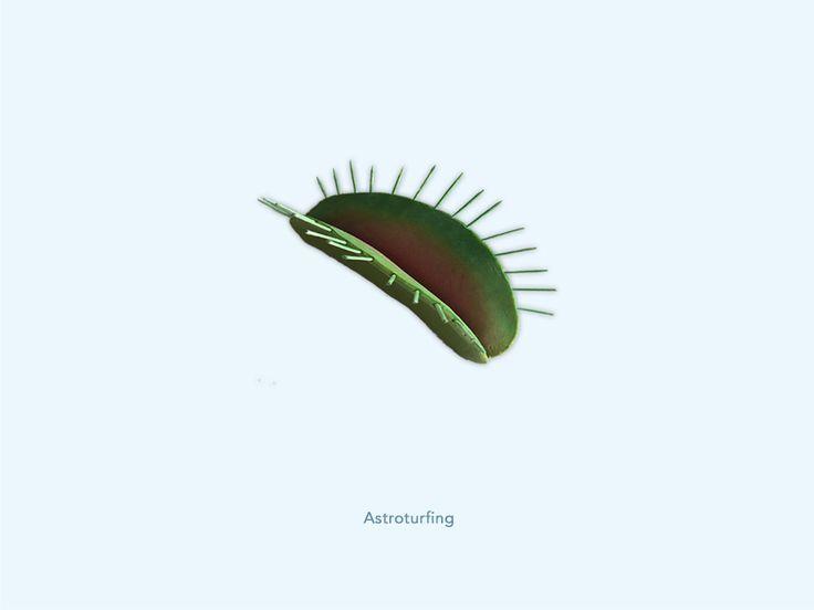Astroturfing - Venus vliegenvanger