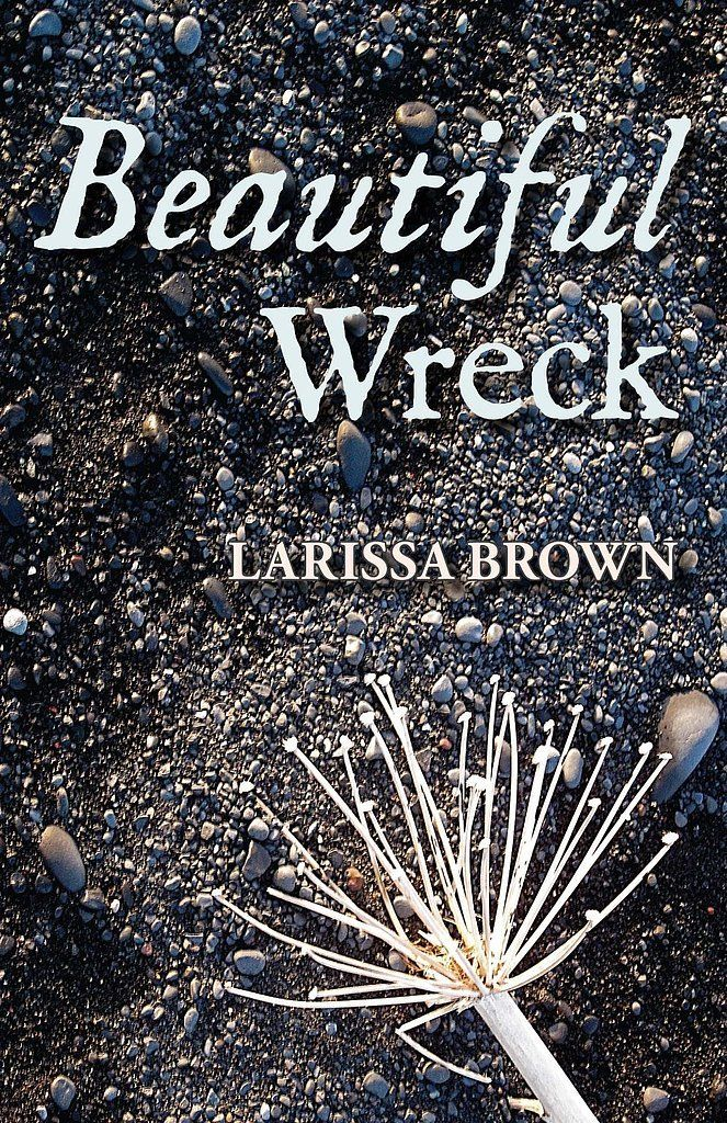 15 best romance recs images on pinterest book book book book beautiful wreck fandeluxe Image collections