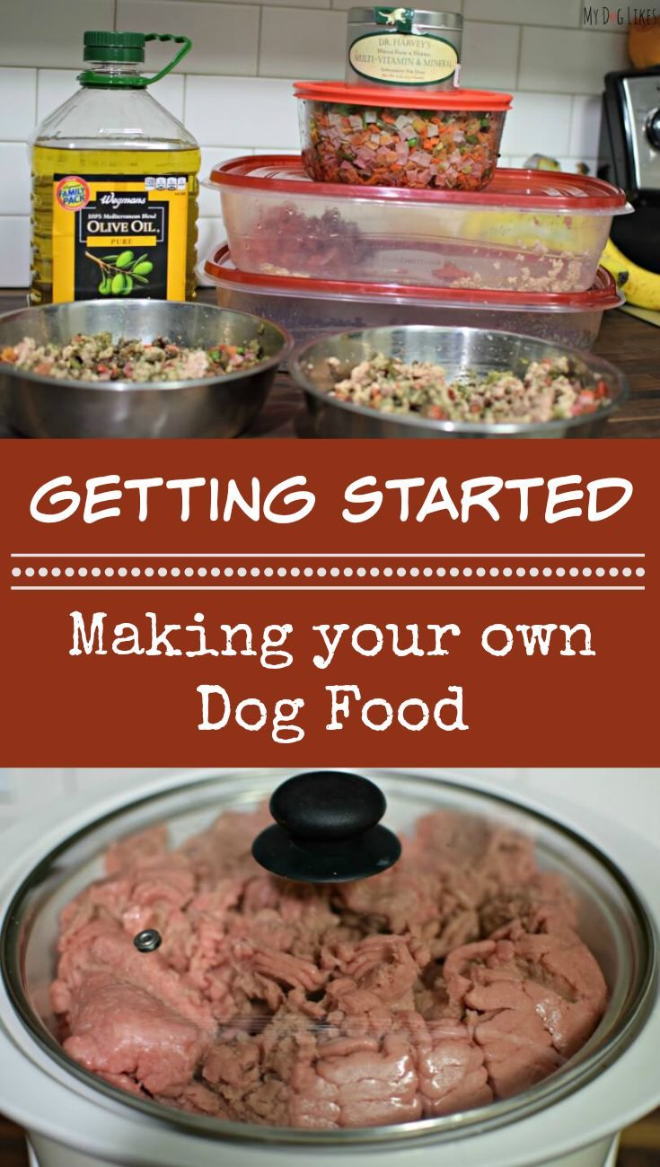 Have you ever considered making your own dog food? It is not as difficult or expensive as you might think. Learn more about how to get started and some convenient products to help you get started!