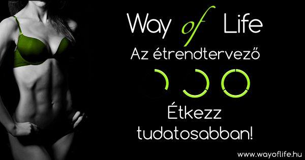 http://www.wayoflife.hu/