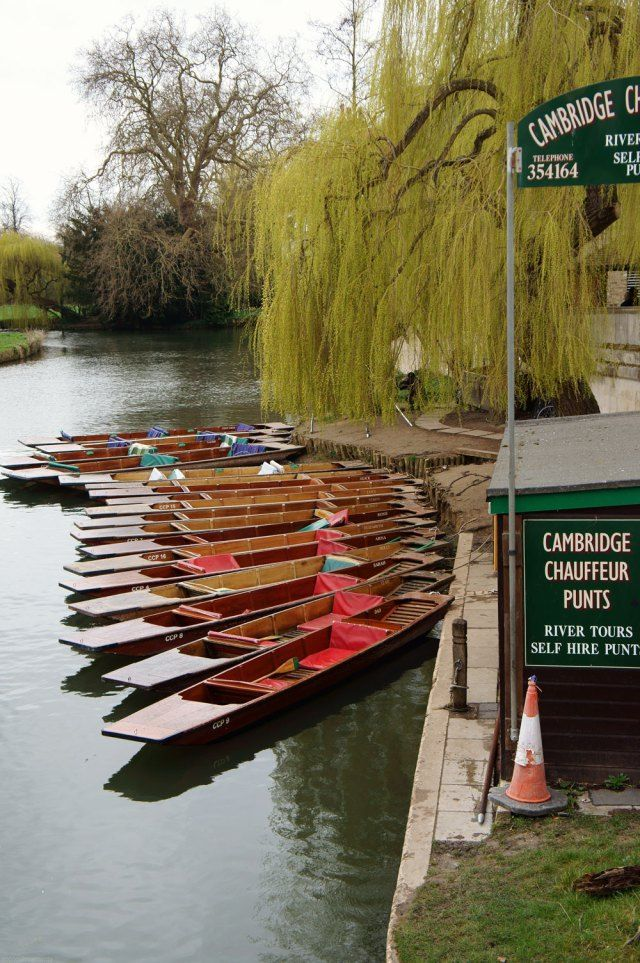 Punting boats on the River Cam in Cambridge, England