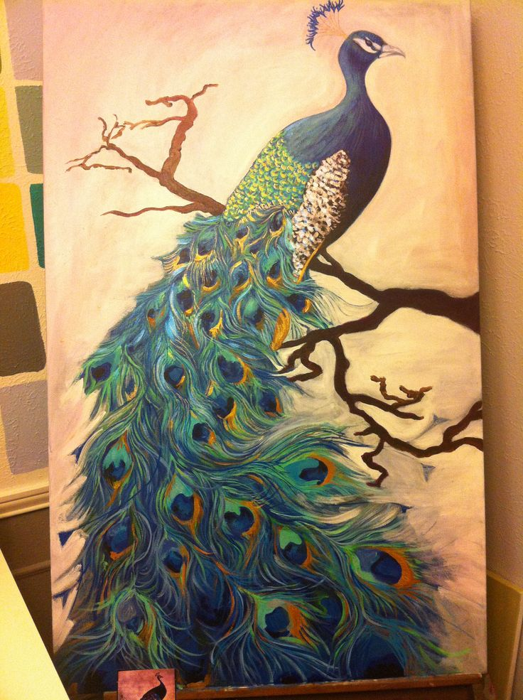 Peacock painting in progress. By: Laura Lester 2013