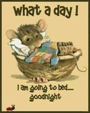 Nitey nite!...Don't Let The Bed Bugs Bite!!