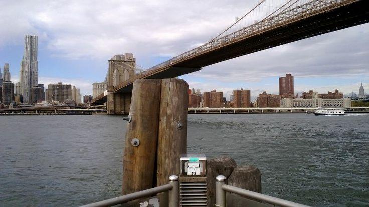 FRANA IN NEW YORK