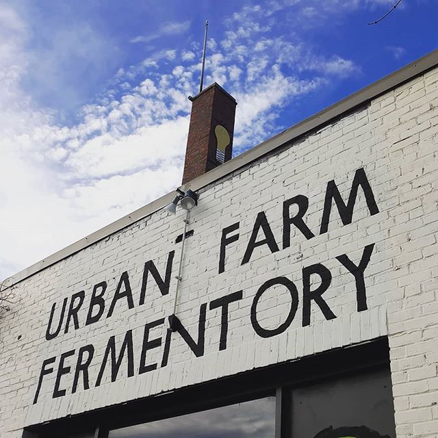 It's a Sunshine Daydream at Urban Farm today. We've got eight different flavors of #kombucha on tap today. And for good measure we threw on 14 other fermented libations to get your Saturday off to a good start. #portlandme #booch #mead #beer#cider #jun #eastbayside #uff