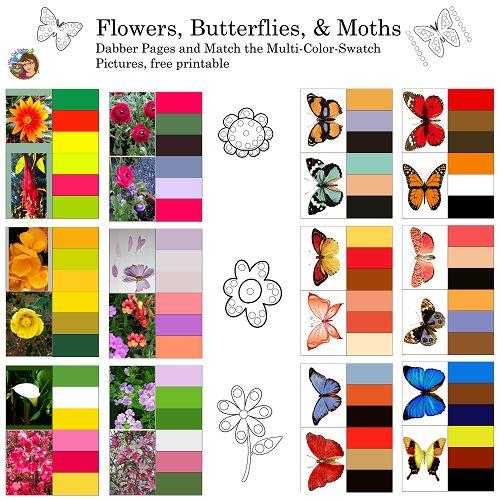 114 besten MONTESSORI... Bilder auf Pinterest | Montessori ...