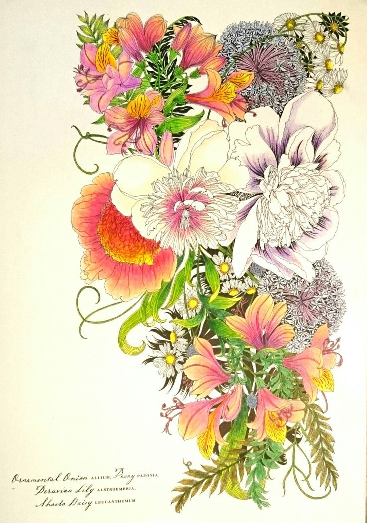 Floribunda colored with koh-i-noor mondeluz